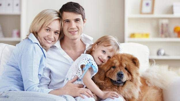 Wills & Trusts dog-young-family Direct Wills Sevenoaks
